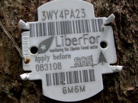 code barre sur un arbre au Libéria