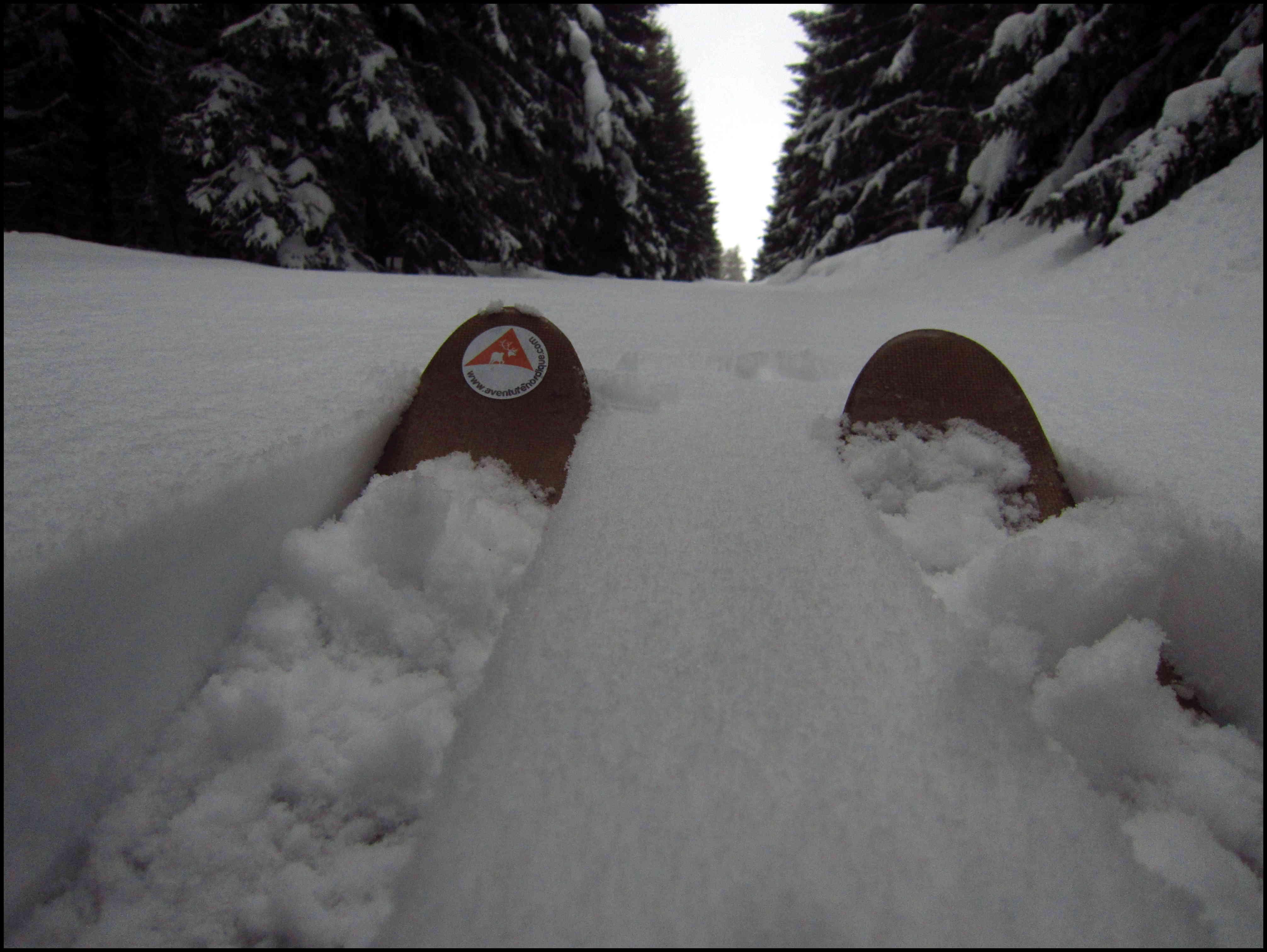 Petit manuel de pratique du ski HOK