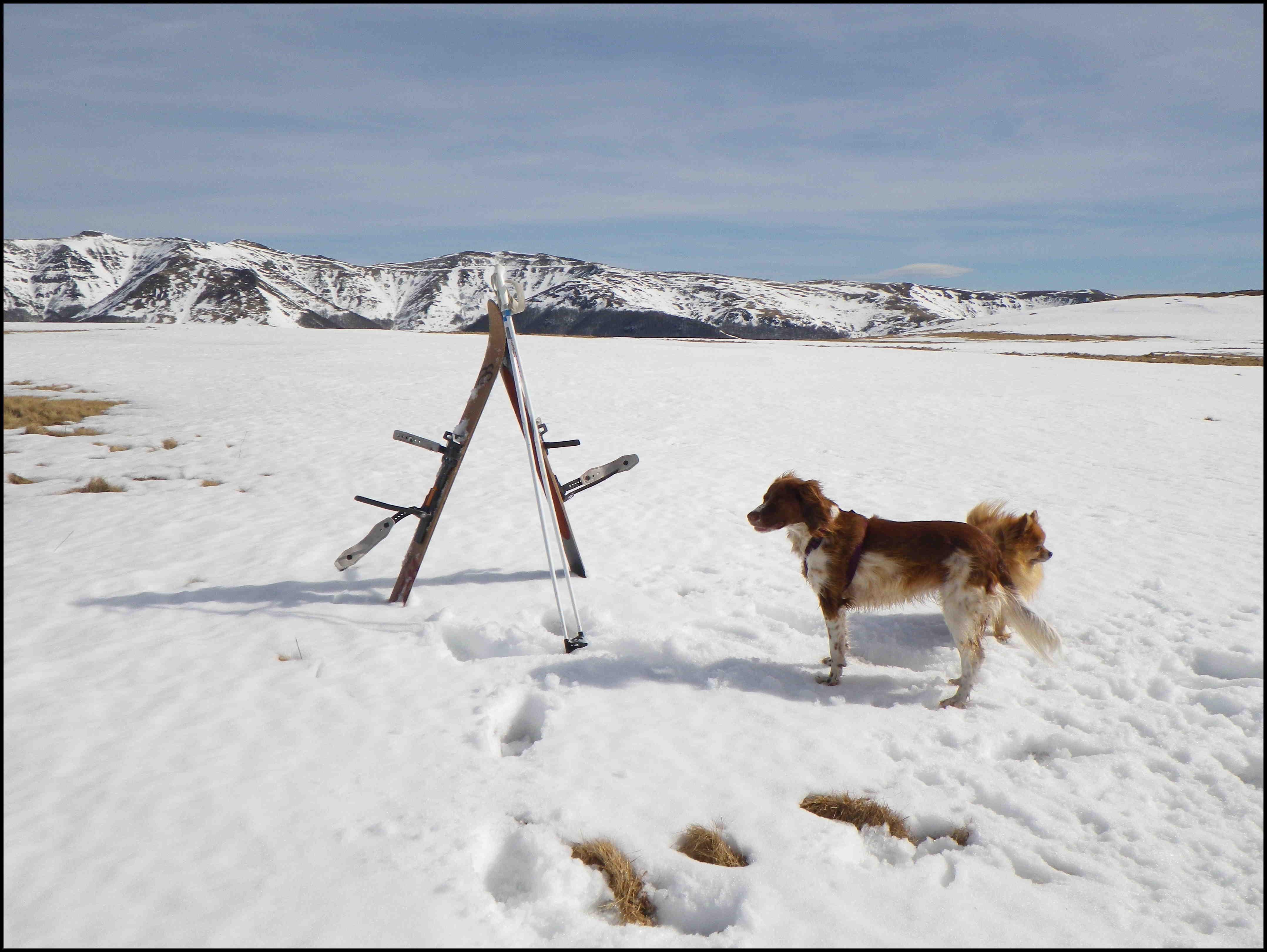 L'art du ski HOK sur la neige de printemps
