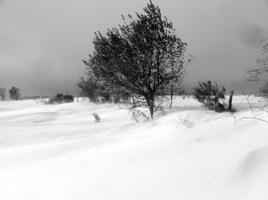 Lundi 13 février 18h30 : apero conférence « Le climat hivernal en moyenne-montagne auvergnate »